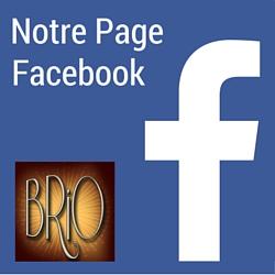 Facebook Les BrioFolies