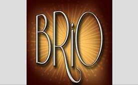 BrioFolies icone