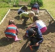 jardin solaire gourmand de brières les scellés