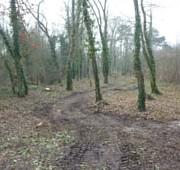 photo du nouveau chemin d'accès au parc de Brieres