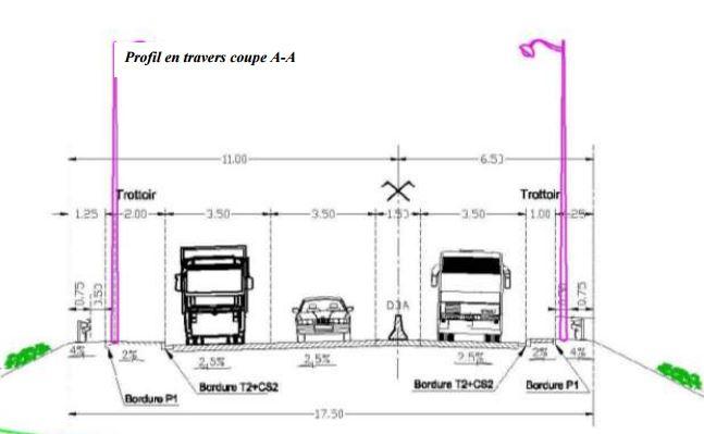 Profil du projet de déviation de la RN191 par Brières les Scellés