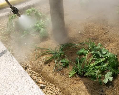 deherbage sans pesticide à Brières le Scellés