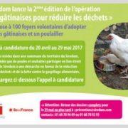 200 poules gâtinaises pour réduire les déchets