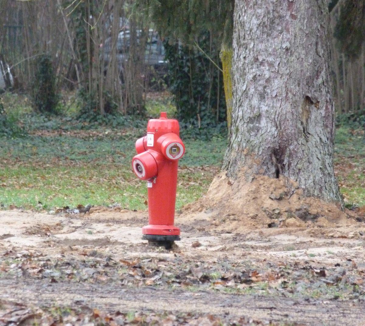 travaux parc de Brières les Scellés