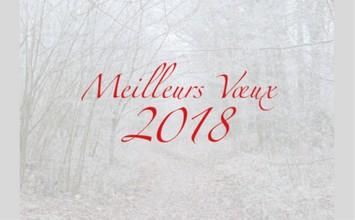 voeux brieres 2018
