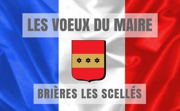 voeux du maire de Brières les Scellés