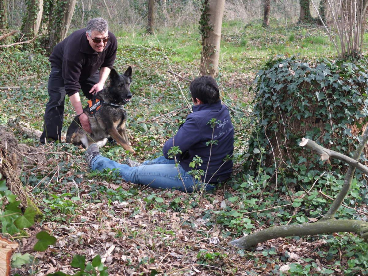 concours chien recherche campagne Brières