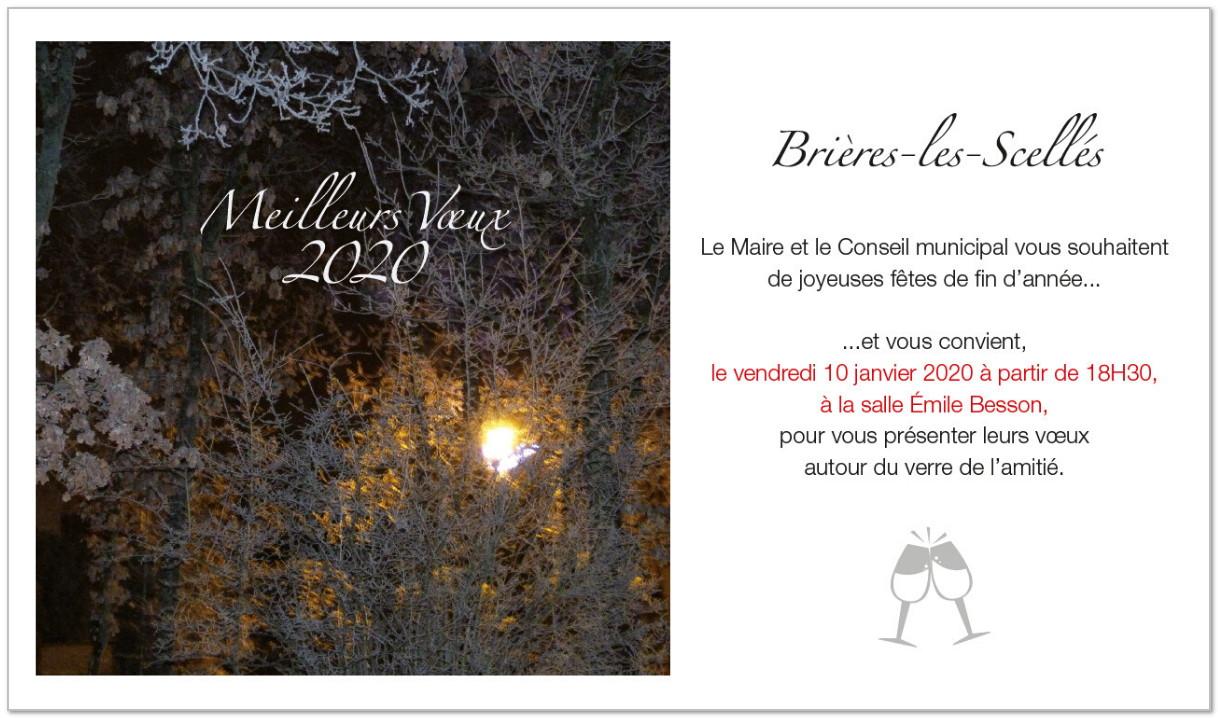 voeux Brières 2019