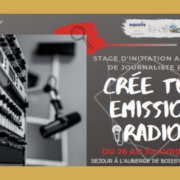 STAGE D'INITIATION AU METIER DE JOURNALISTE RADIO